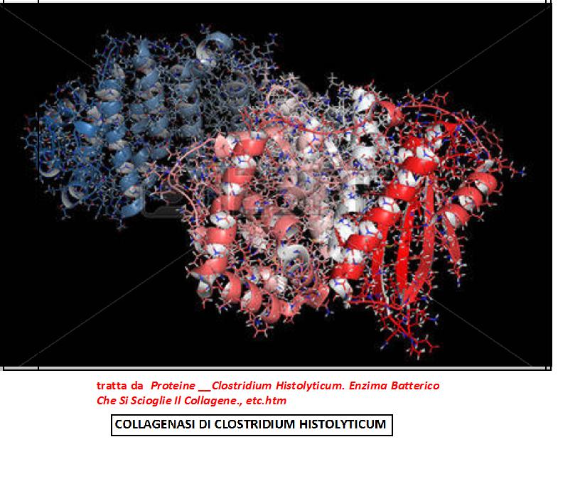 La malattia viene curata oggi con iniezioni di un enzima caacba59ba8a