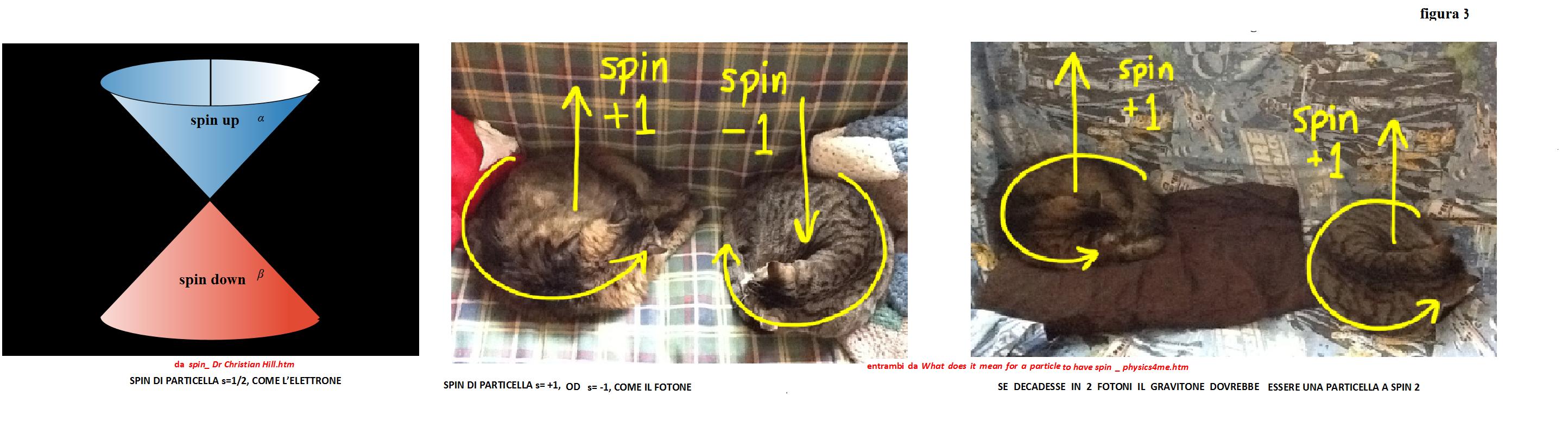 lo spin del fotone che ¨ = 1 o 1 e quello delgravitone = 2 in figura 3 Il bosone di Higgs ¨ stabile al di sotto di 1015 gradi K